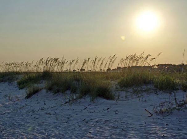 Beach beauty, Dauphin Island