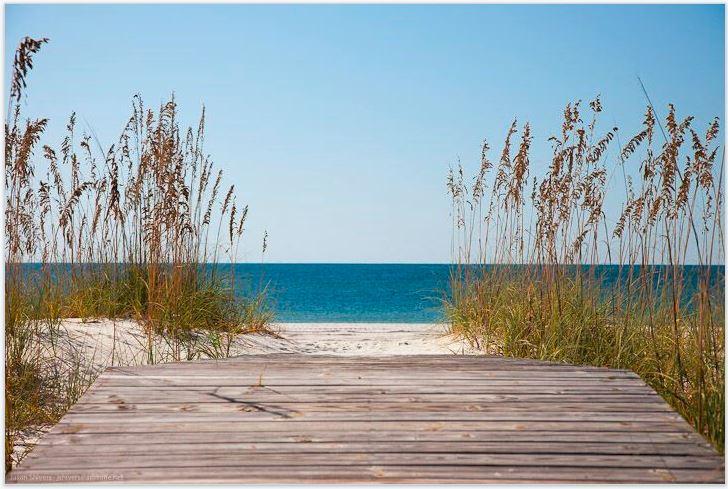 GSOB beach photo