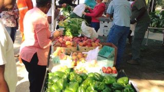 Market in the Park is held each Saturday at Cathedral Square in downtown Mobile.