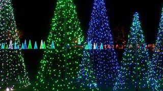 Bellingrath Lights