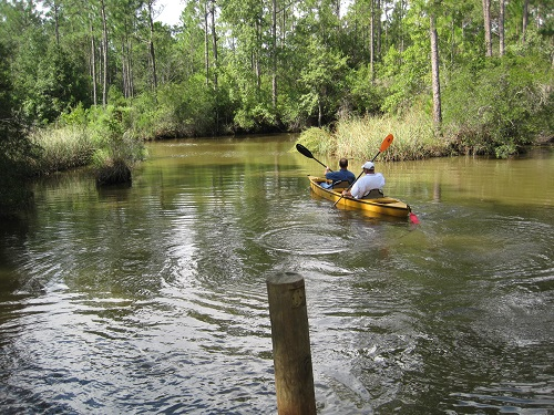 Kayak at Graham Creek, Foley