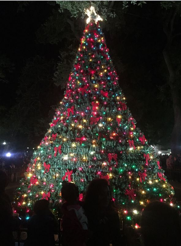 Bienville Square Christmas_Mobile