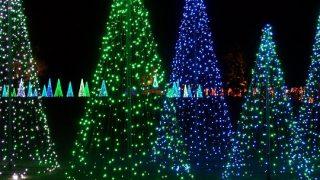 Bellingrath Lights